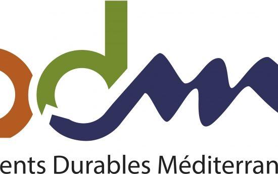 logo-bdm-hd-2-rvb